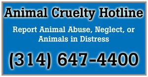 Animal Cruelty Hotline